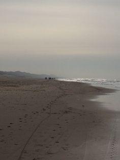 winter-Noordzee-shore