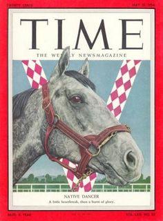 Horse Pedigree Database   Native Dancer   Thoroughbred   American Quarter Horse Association