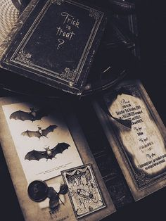 scary gif Black and White creepy horror Halloween Grunge books punk bats goth Boo gothic spooky eerie witchcraft pastel goth october Gothic Aesthetic, Slytherin Aesthetic, Witch Aesthetic, Journal Aesthetic, Character Aesthetic, Dracula, Sombra Lunar, Imagenes Dark, Fall Inspiration