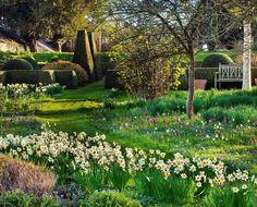"1,851 To se mi líbí, 35 komentářů – Clive Nichols (@clivenichols) na Instagramu: ""Spring meadow at Pettifers #spring #springtime #narcissi #narcissus #fritillaria #fritillary…"""