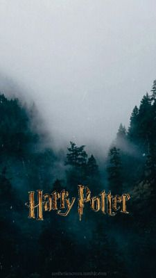 Harry Potter Wallpaper Only Potter Can Harry Potter
