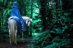 medieval lady in blue with horse