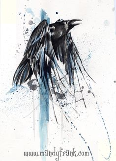 Raven splash by Milui.deviantart.com on @deviantART