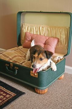 DIY Cat and Dog Bed Ideas What an adorable idea! Convert a vintage suitcase into a stylish dog bed for your favorite canine companion!What an adorable idea! Convert a vintage suitcase into a stylish dog bed for your favorite canine companion! Diy Pour Chien, Pallet Dog Beds, Diy Dog Bed, Diy Bed, Pet Beds Diy, Vintage Suitcases, Vintage Luggage, Dog Rooms, Pet Furniture