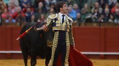 PREMIOS Unanimidad en los destacados El Juli acapara menciones al triunfador de Sevilla - Mundotoro.com #toros #toreros #ElJuli