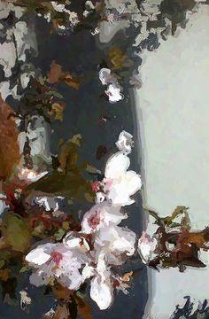 Plum Blossoms 2015