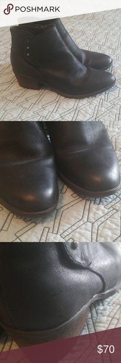 Daphne shoes