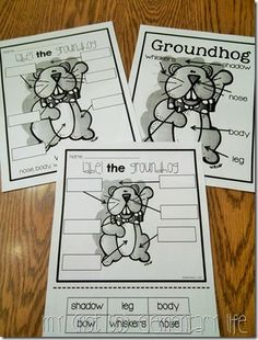 Groundhog's day labeling activity