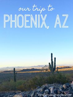 Dimples and Tangles: OUR TRIP TO PHOENIX, ARIZONA- WHAT WE DID, WHERE WE ATE, AND WHERE WE STAYED