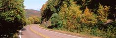 Trees on the both sides of a road, Veterans Memorial Highway, Adirondack Mountains, New York State, USA http://www.walls360.com/seasons-wall-graphics-s/2002.htm