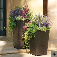 self-watering planters - concealed insert with smart sensor to prevent waterlog, delay watering after rain and notify when it's time to refill