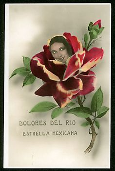 Dolores Del Rio - Mexican movie star from the and Rodolfo Valentino, Comedia Musical, Female Movie Stars, Old Movies, Vintage Postcards, Collage Art, Flower Children, Flower Girls, Flora