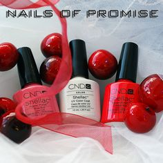 Shellac this Christmas at nails Of Promise. #nailsofpromise #nailsgantshill
