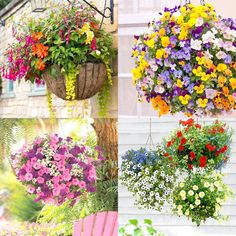 How to plant beautiful hanging baskets that last for months. Choose the best plants from these 15 designer plant lists for hanging flower baskets in sun or shade, plus easy care tips on soil, water and fertilizer for a healthy hanging basket! Hanging Plants Outdoor, Plants For Hanging Baskets, Hanging Flowers, Diy Flowers, Plants Indoor, Diy Hanging, Potted Flowers, Flower Pots, Container Plants
