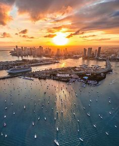 Miami is the perfect place to sit back and catch a beautiful sunset and these are the best places to watch the sunset in Miami. Miami Sunset, Best Sunset, Beautiful Sunset, Miami Beach, Visit Florida, Florida Travel, Miami Florida, South Florida, Travel Usa