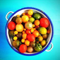 Organic tomatoes mix