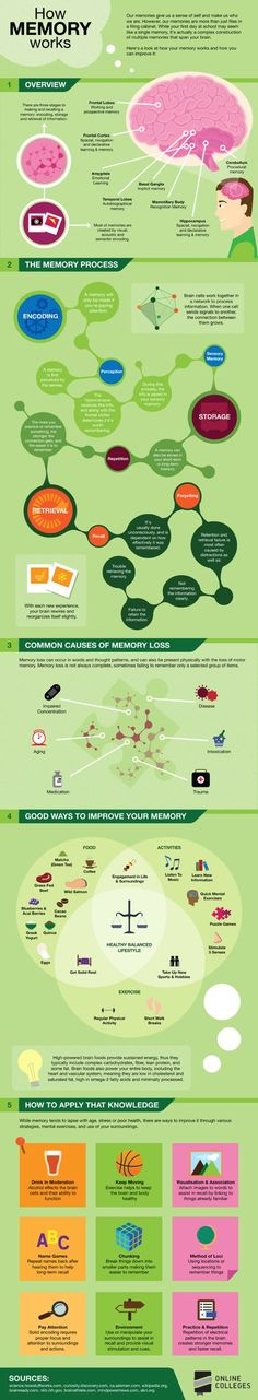 OnlineColleges have put together this helpful infographic that simplifies and maps out how memory works, along with some tips on how to improve yours. This is a good revision tool for Cognitive Psychology Memory Words, Working Memory, Info Board, E Learning, Brain Based Learning, Blended Learning, Study Skills, School Psychology, Educational Psychology