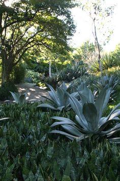 Roberto Burle Marx-Sitio gardens