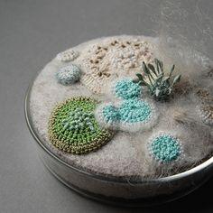 """crochet petri dish,"" one of many wonderful crocheted/fiber arted mold-like creations."