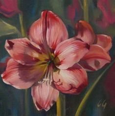 """Daily Paintworks - """"Pretty in Pink"""" - Original Fine Art for Sale - © Carla Gauthier"""