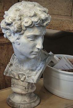Male Bust Classical