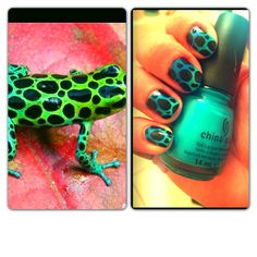 How to Create Exotic Frog Print Nails