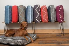 Artisanal, Bohemian Beds and Collars from Fillydog - Dog Milk Dog Collar Boy, Dog Milk, Dog Furniture, Dog Blanket, Leather Dog Collars, Dog Accessories, Dog Supplies, Your Dog, Pets