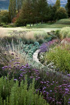16 Simple Solutions for Small-Space Landscapes suzanne turley landscape design / hill garden, queenstown nz Flower Landscape, Garden Planning, Landscaping Supplies, Landscape Design, Garden On A Hill, Landscape Plans, Outdoor, Plants, Backyard Landscaping
