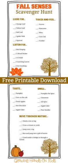 10 Fall Activities For Preschoolers