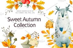 """""""Sweet Autumn Collection"""" The set of high quality hand painted watercolor images. Watercolor Images, Watercolor Illustration, Graphic Illustration, Illustrations, Carton Invitation, Black And White Background, Autumn Wreaths, Thanksgiving Cards, Free Graphics"""