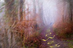 Dein Weg zur Entspannung: Dein Weg ist nicht mein Weg....