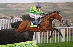 Kauto Star  by Equestrian Artist Stuart Herod Ascot Gallery