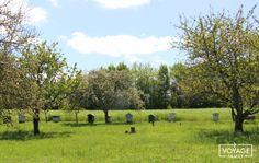 Notre week-end insolite en famille dans le Berry du Sud (autour de La Chatre et Lignières) - VOYAGE FAMILY