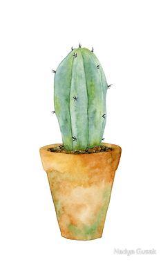 #watercolor #cactus