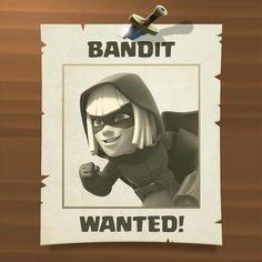 Bandit wanted