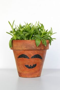 Clay pot craft: funny face planter - Mod Podge Rocks