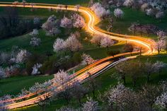 Cherry Road by tobiasryser #Landscapes #Landscapephotography #Nature #Travel #photography #pictureoftheday #photooftheday #photooftheweek #trending #trendingnow #picoftheday #picoftheweek