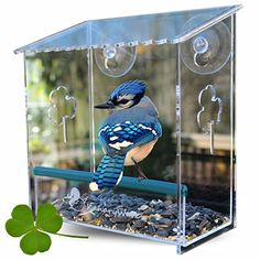 Window Bird Feeder for Small and Large Wild Birds Birdhouse is Clear Window Mounted See Through Squirrel Resistant Easy to Install With Drainage Holes  Beautiful Packaging Makes a Great Gift >>> Click image to review more details. Note: It's an affiliate link to Amazon
