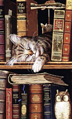 Sleeping cat in books - pretty sure this is by Charles Wysocki.