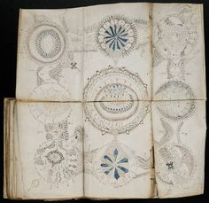 """paperphilia:  The Voynich manuscript is a handwritten book thought to have been written between 1404-1438. Although many possible authors have been proposed, the author, script, and language remain unknown. It has been described as """"the world's most mysterious manuscript"""""""