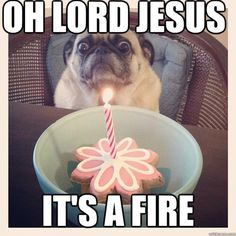 Oldie but a goodie.  Oh Lord Jesus, it's a fire pug.