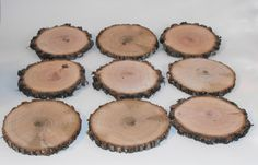 5  Large Hickory wood Slices 4-4.5 inches,  Fun Crafts, Fairy Gardens, Wedding Decor, Painting Therapy