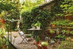 Jardín frondoso con suelo de cantos rodados. Conéctate con la naturaleza