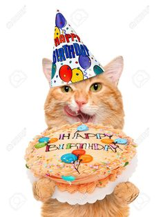 If You Are Looking For Birthday Cat Images For Your birthday cat Party So You Are On Right Place , we Have Some Best happy Birthday kitty Images And Quotes Happy Birthday Cat Images, Happy Birthday Wishes Cards, Happy Birthday Wallpaper, Happy Birthday Funny, Happy Birthday Quotes, Cat Birthday, Funny Birthday Cards, Birthday Memes, Gatos Vector