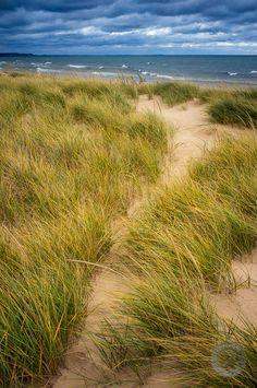 Lake Michigan Dune Grass, Ludington State Park, Michigan ~  Photo: Mark Graf