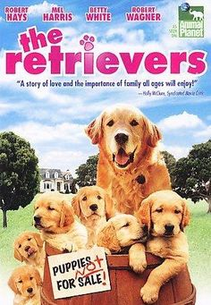 Robert Hayes and Robert Wagner star in RETRIEVERS, a family-oriented film about a family who finds a dog and her puppies. This light movie, made for Animal Planet, is appropriate for children and anim