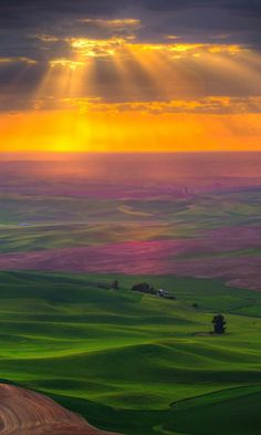 The Palouse hills, Steptoe Butte, Washington by Kevin McNeal photography