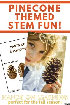 Get your kids to enjoy hands on learning that is perfect for the fall season! This pinecone themed STEM activity will get kids engaged in the STEM subjects and help them become engaged in science subjects. Help children better understand the environment and sciences with early STEM education. Simple activities you can do at home!