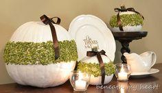 pumpkins with split peas ~ how creative! ~ via beneath my heart