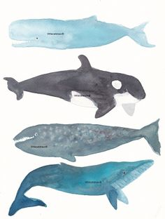 Whales Art Watercolor Painting Print by Littlecatdraw on Etsy, $11,00
